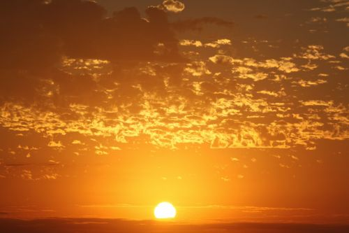 sun raise nature sun