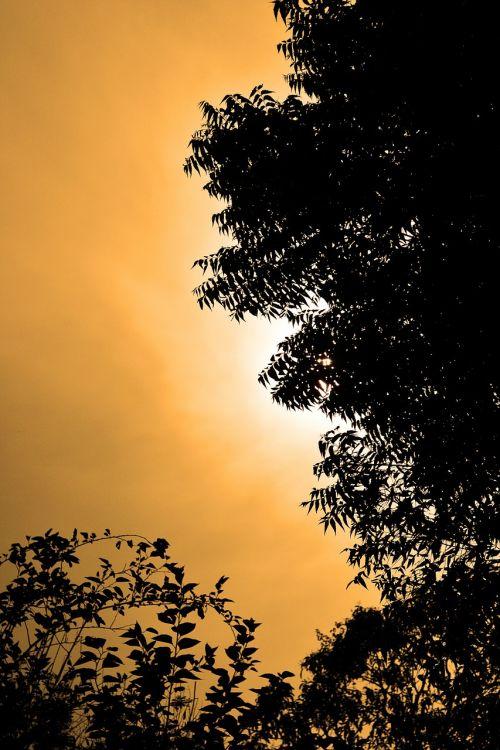 sun set sun light