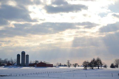 sunbeam  canada  farm