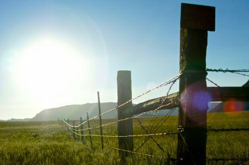 Sunburst Over Barbed Wire