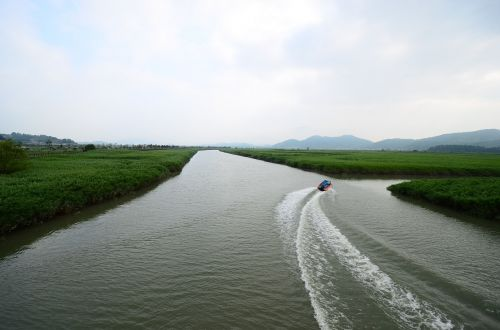 suncheon bay bog ecological park