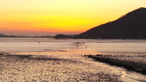 suncheon bay sunset tidal