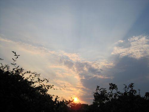 saulėlydis, oranžinė, saulė, orb, švytėjimas, medžiai, saulės saulė ir debesys