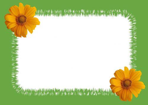 sunflower photo zigzag frame