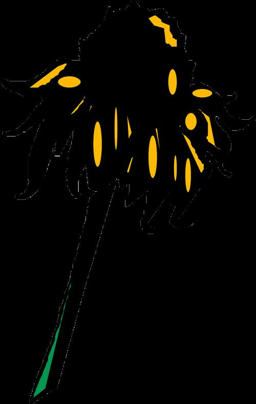 sunflower wilted petal