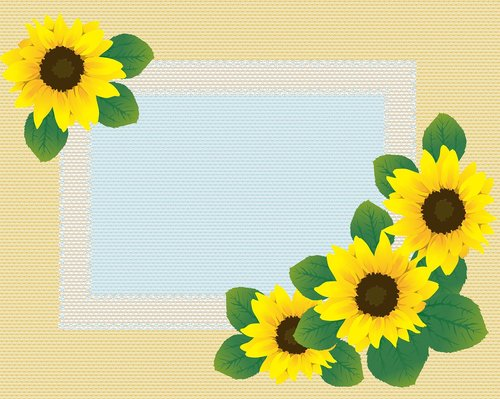 sunflower lace background  sunflower paper  sunflower digital paper