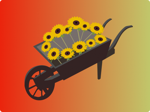 sunflowers wheelbarrow pushcart