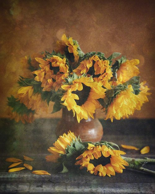 sunflowers  yellow  bouquet