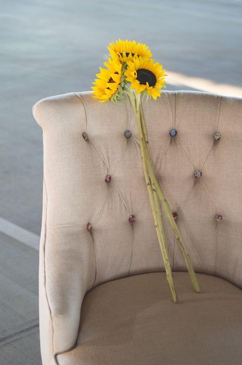 sunflowers chair seat