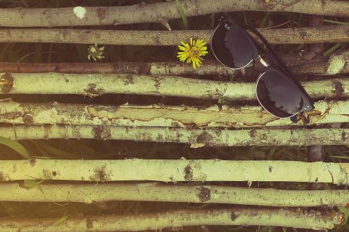 sunglasses arranged lying on