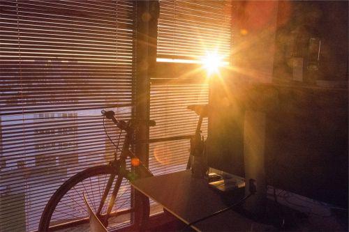 sunlight window blinds