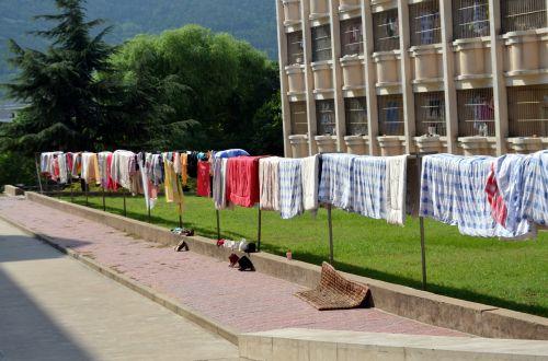 Sunning Blankets (a)