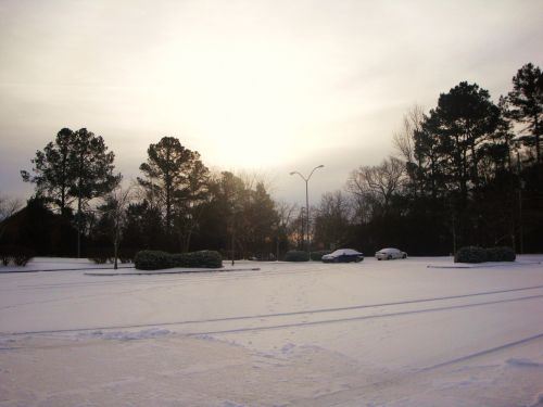 Sunny Snowy Morning