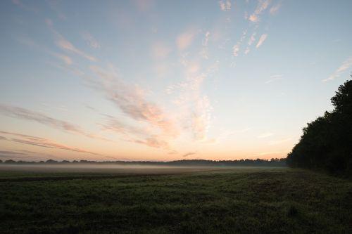sunrise field fog