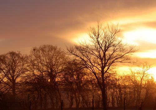 sunrise morning morgenstimmung