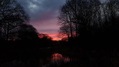 sunrise dark light