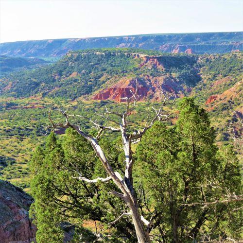 sunrise palo duro canyon red sandstone