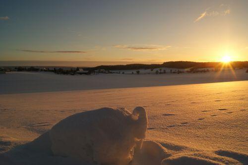 sunrise winter snow lane