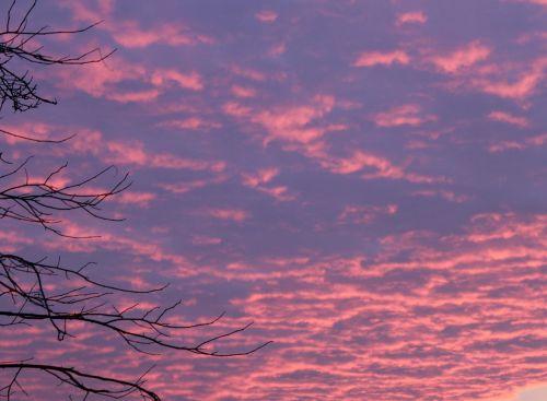 sunrise morgenrot skies