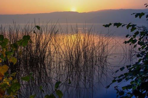 sunrise  dawn  laacher lake
