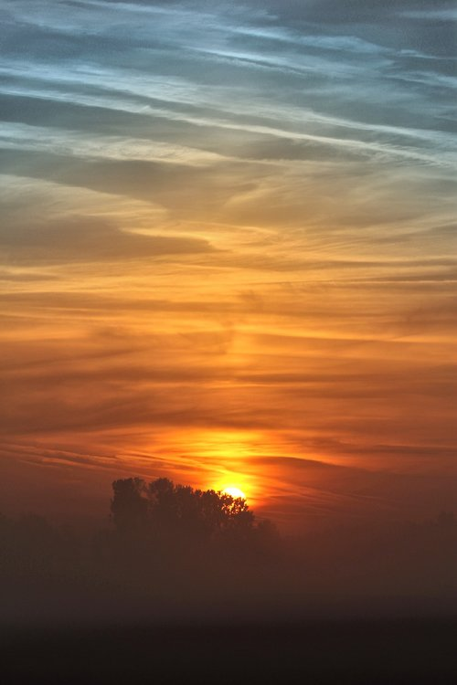 sunrise  autumn  fog