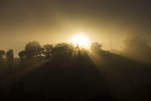 sunrise sol fog