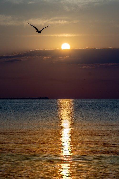 sunrise  black sea  sea