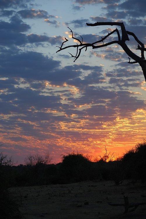 sunrise  africa  botswana