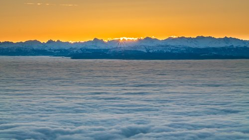 sunrise  sea of fog  alpine
