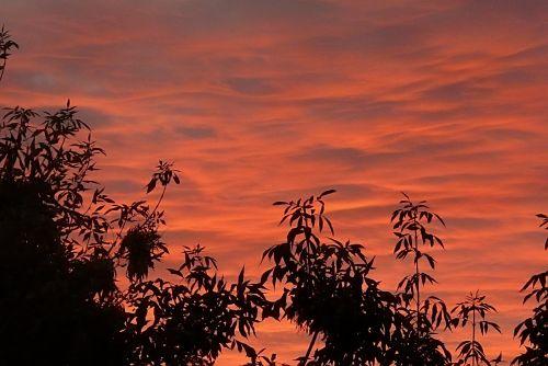 sunrise clouds dawn