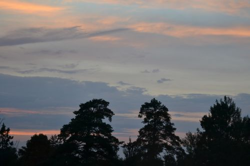 orange evening light