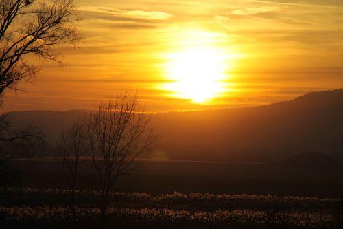 sunset afterglow sky