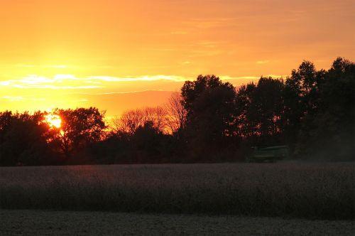 sunset soybean harvest