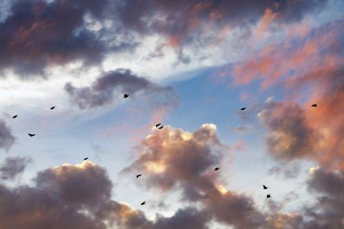 sunset clouds cloudscape