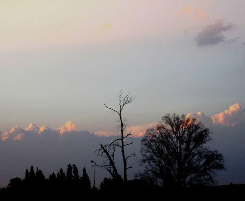 sunset pink sky clouds