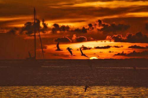 saulėlydis,dusk,žvejybos laivas,laivas,paukščiai,kaukolės,žuvėdros,dangus,debesys,saulė,spalvinga,gražus,raudona,oranžinė,horizontas,jūra,vandenynas,vanduo,hdr