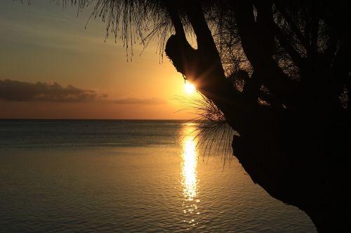 sunset tropics island