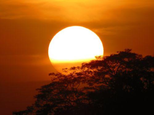 sunset sun backlight