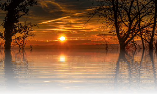 sunset holiday sun
