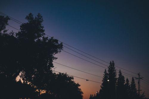 saulėlydis,dusk,dangus,naktis,tamsi,vakaras,medžiai,elektros laidai,siluetas,šešėliai,gatvės šviesos