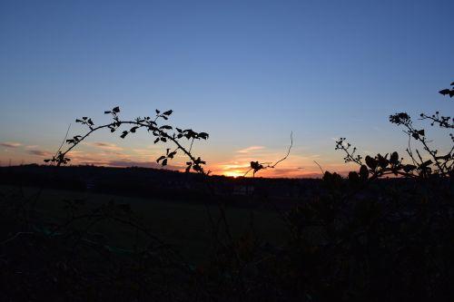sunset summer warmth