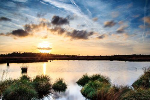 sunset,moor,venn,belgium,eifel,mood,nature reserve,swamp,abendstimmung,landscape,wetland,high fens,moorland,marsh