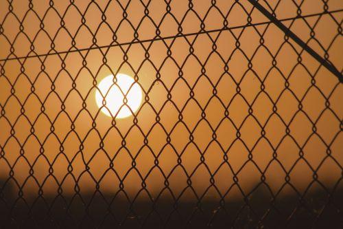 sunset fence grid