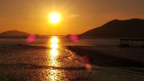 sunset suncheon bay tidal