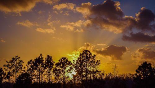 sunset everglades south