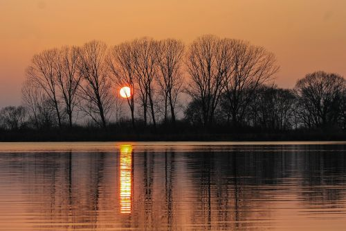 sunset trees water surface