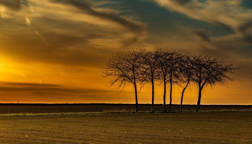 sunset dawn sun