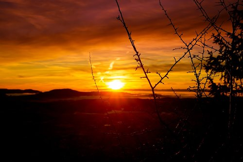 sunset  evening  dusk