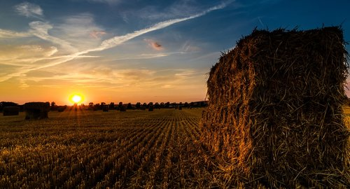 sunset  straw harvest  summer