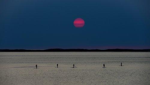 sunset  sea  paddle